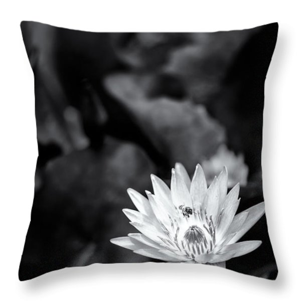 Flight of the Bee Throw Pillow by Jon Glaser