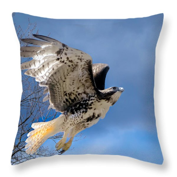 Flight Of The Red Tail Square Throw Pillow by Bill  Wakeley