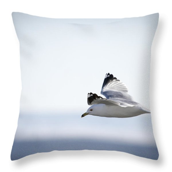 Floating On High 1 Throw Pillow by Thomas Young