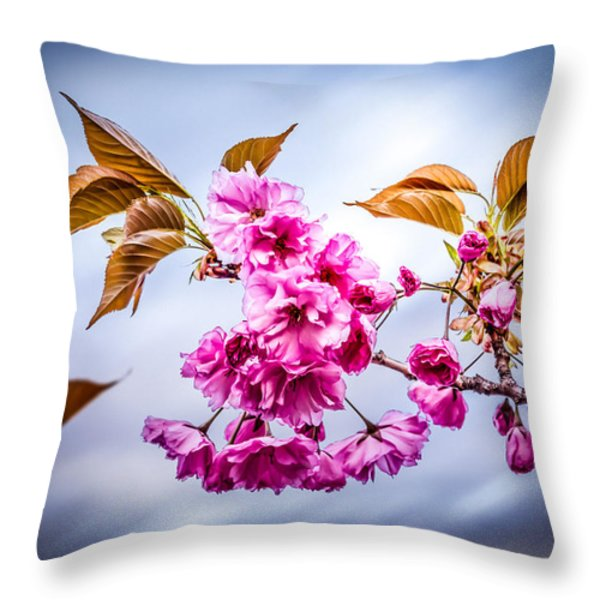 Floating To Earth Throw Pillow by Bob Orsillo