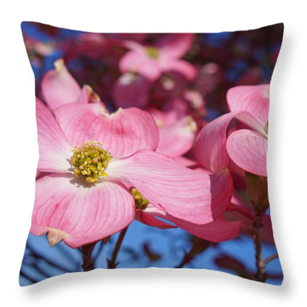 Floral Art Print Pink Dogwood Tree Flowers Throw Pillow by Baslee Troutman Fine Photography Art