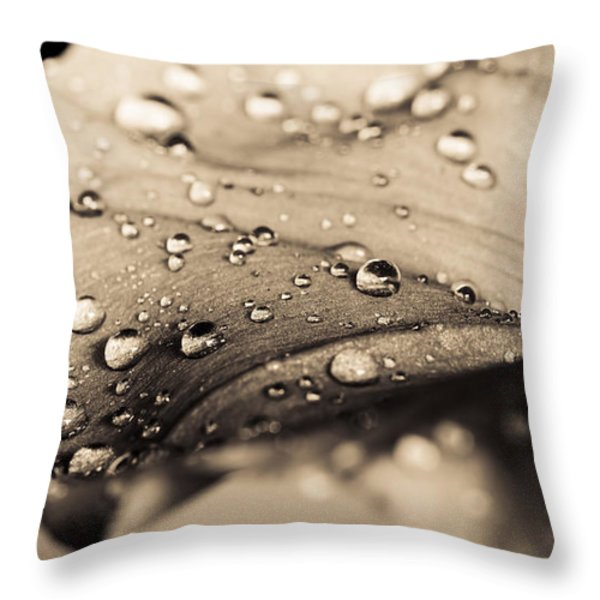 Floral Close-Up III Throw Pillow by Marco Oliveira