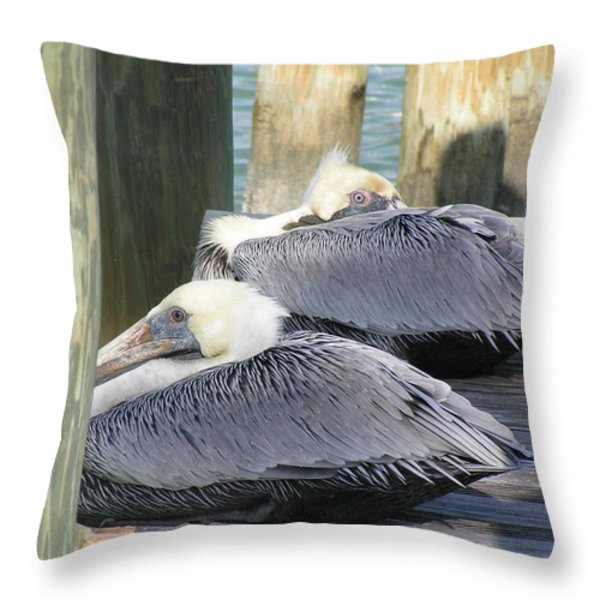 Florida Brown Pelicans Throw Pillow by Tracy L Teeter