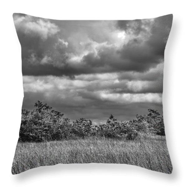 Florida Everglades 0184bw Throw Pillow by Rudy Umans