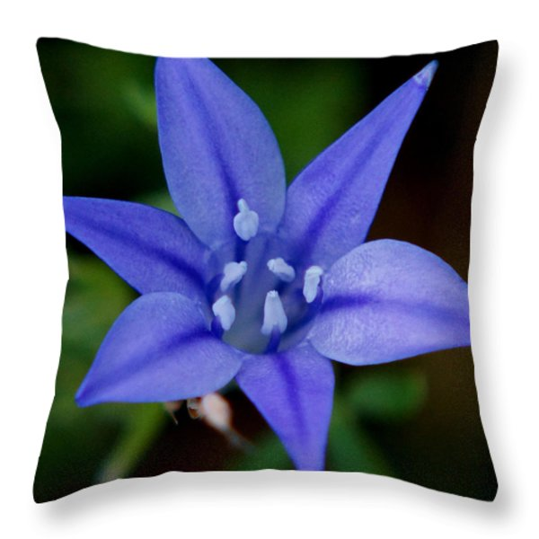 Flower From Paradise Lost Throw Pillow by Kim Pate