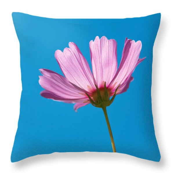 Flower - Growing Up In Philadelphia Throw Pillow by Mike Savad