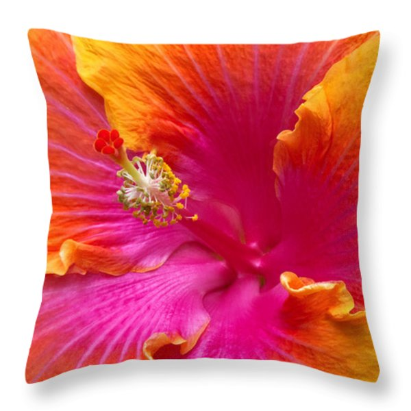 Flower - Hibiscus Rosa-sinesis - Chinese Hibiscus - Appreciation Throw Pillow by Mike Savad