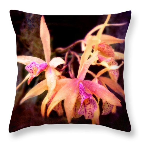 Flower - Orchid - Laelia - Midnight Passion Throw Pillow by Mike Savad