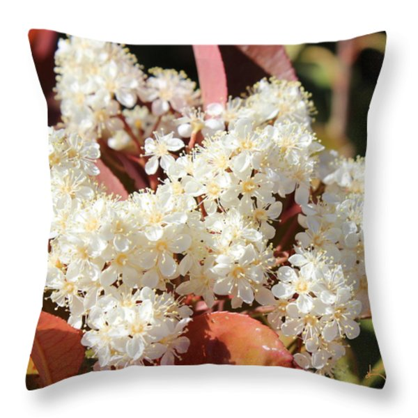 Flower Puffs Throw Pillow by Kume Bryant