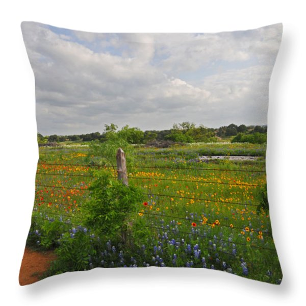 Flowers Along The Tracks Throw Pillow by Lynn Bauer