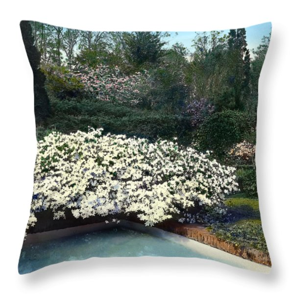 Flowers and Pool Throw Pillow by Terry Reynoldson