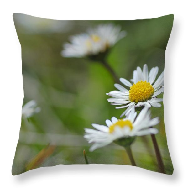 Flowers At The Mountains Throw Pillow by Guido Montanes Castillo