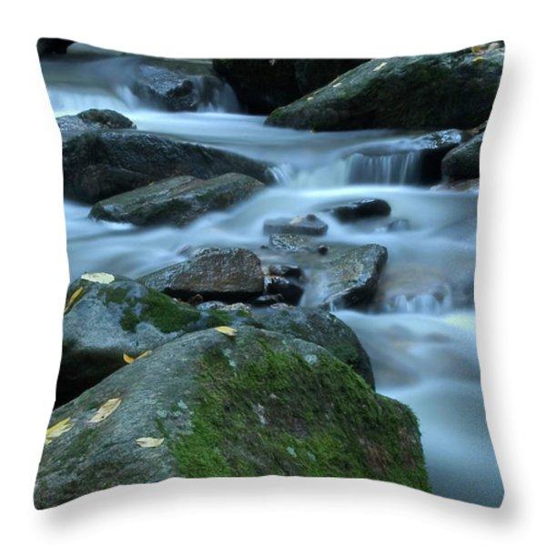 Flowing Spirit Throw Pillow by Karol Livote