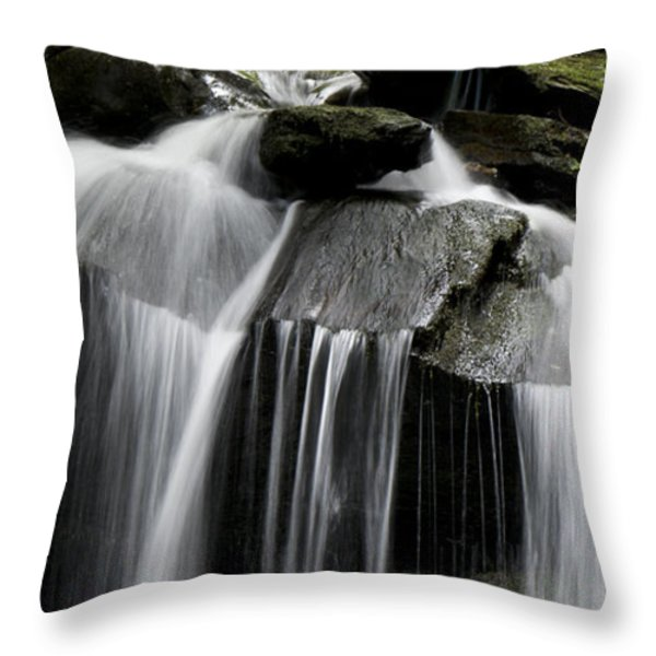 Fluke Fall Throw Pillow by Gary Eason