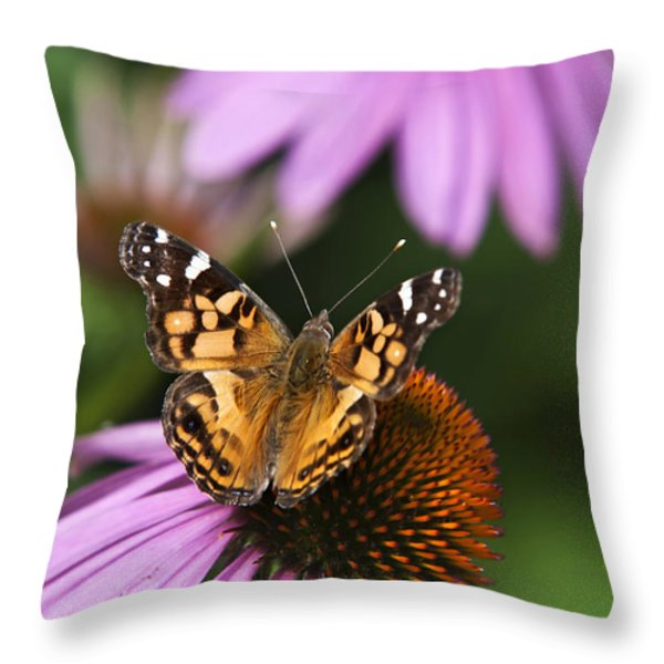 Fluttering Breeze Butterfly Throw Pillow by Christina Rollo