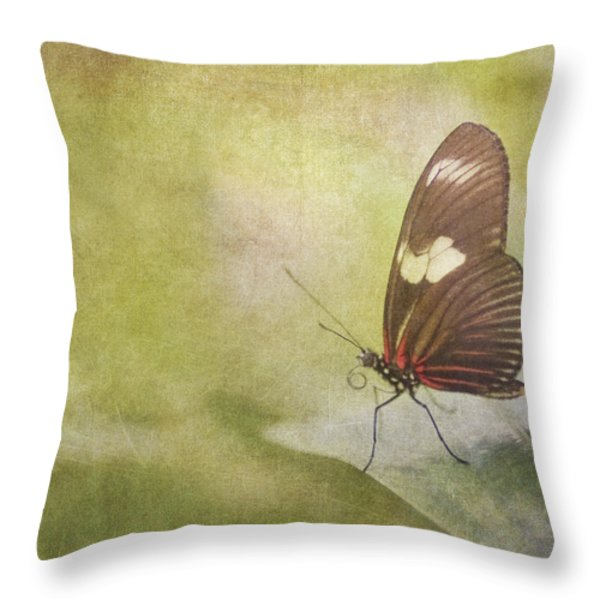 Fly Away Throw Pillow by David and Carol Kelly