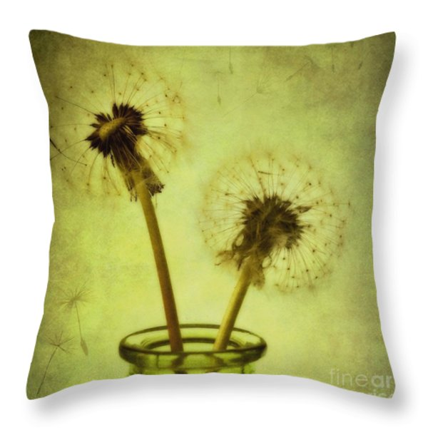 fly away Throw Pillow by Priska Wettstein