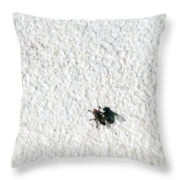 Fly On A Wall Throw Pillow by Alexander Senin