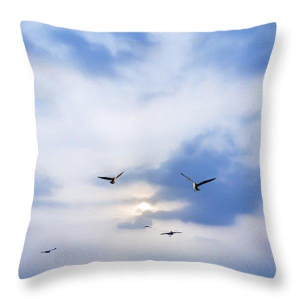 Fly To Freedom Throw Pillow by Setsiri Silapasuwanchai