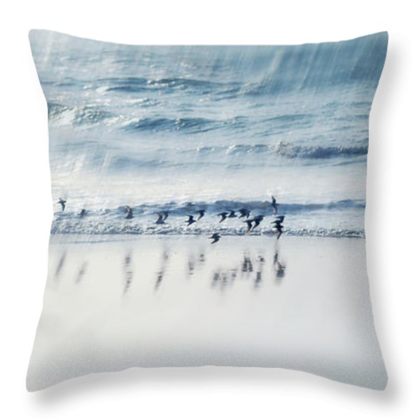 Flying Free Throw Pillow by Jenny Rainbow
