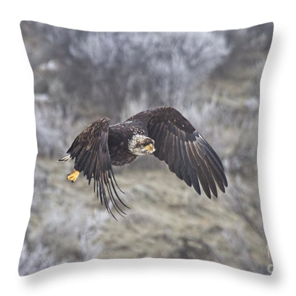 Flying Low Throw Pillow by Mike  Dawson