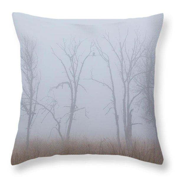 Fog Throw Pillow by Angie Vogel