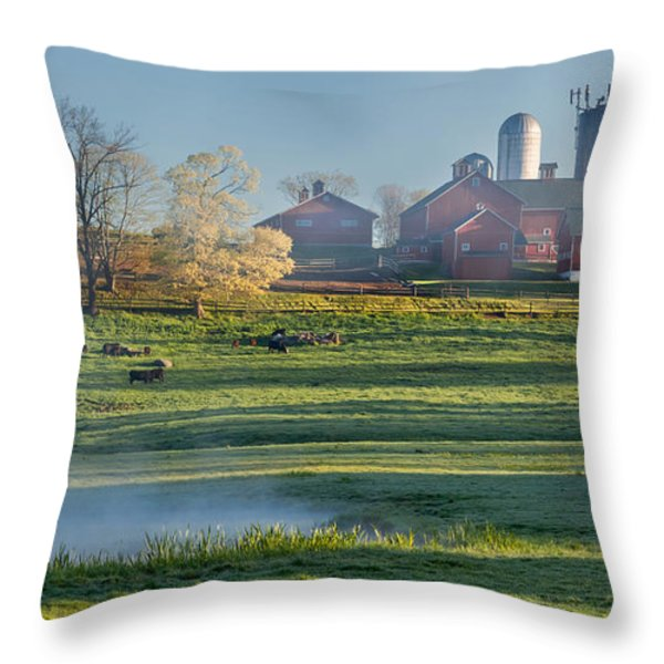 Foggy Farm Morning Throw Pillow by Bill  Wakeley