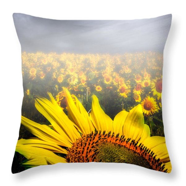 Foggy Field of Sunflowers Throw Pillow by Bob Orsillo