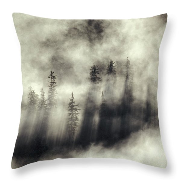 Foggy Landscape Stephens Passage Throw Pillow by Ron Sanford