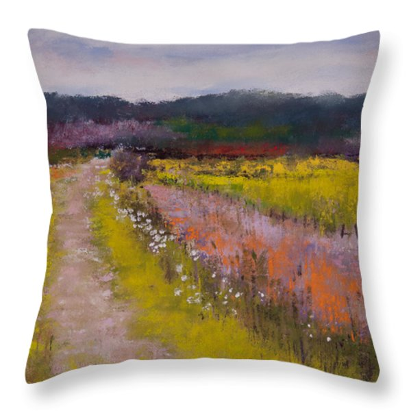 Follow The Daisies Throw Pillow by David Patterson