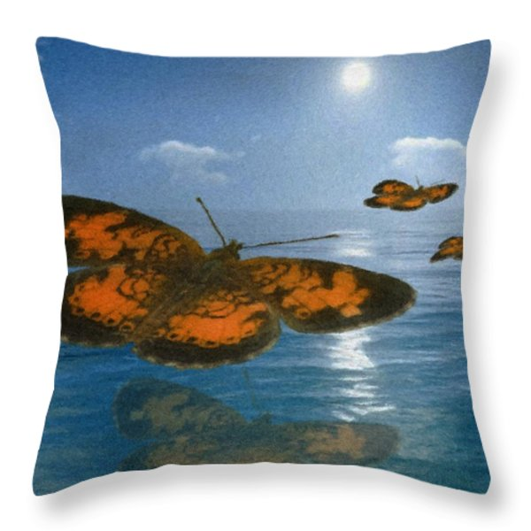 Follow The Sun Throw Pillow by Jack Zulli