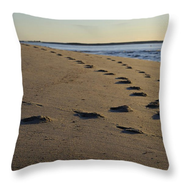 Follow Your Path Throw Pillow by Luke Moore