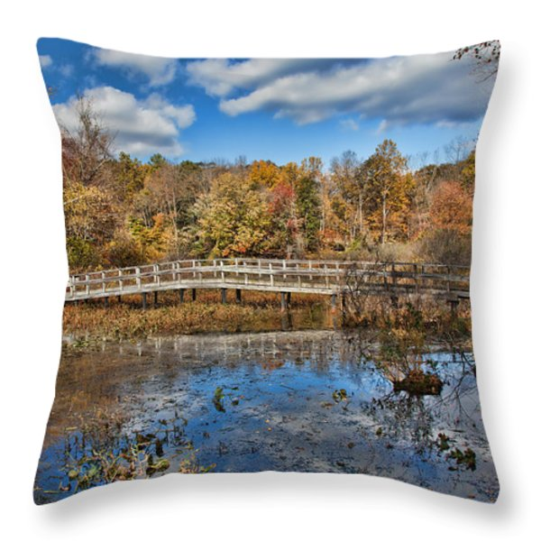 Foot Bridge Throw Pillow by June Marie Sobrito