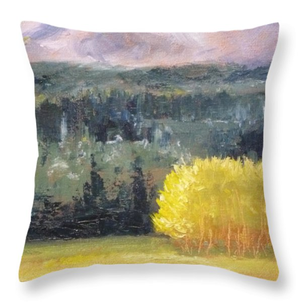 Foot Of The Mountain Throw Pillow by Nancy Merkle