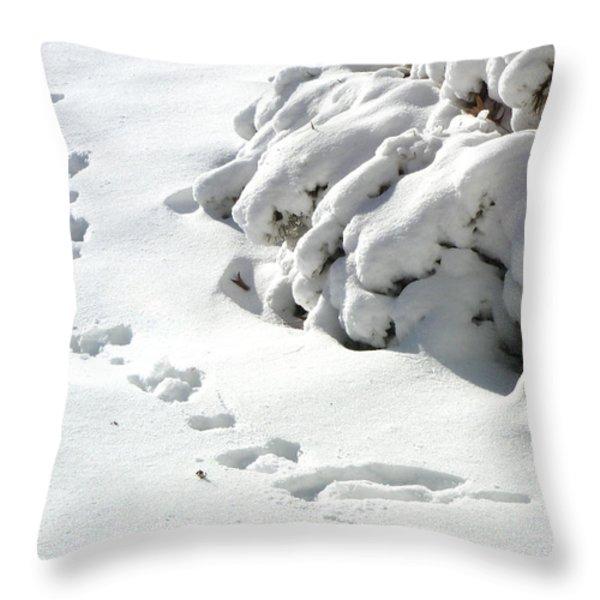 footprints in the Snow Throw Pillow by Rachel Christine Nowicki