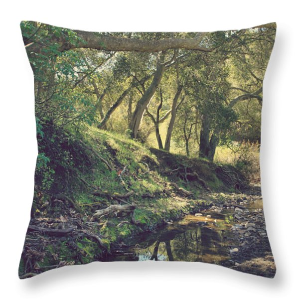 For a Time You Were Mine Throw Pillow by Laurie Search