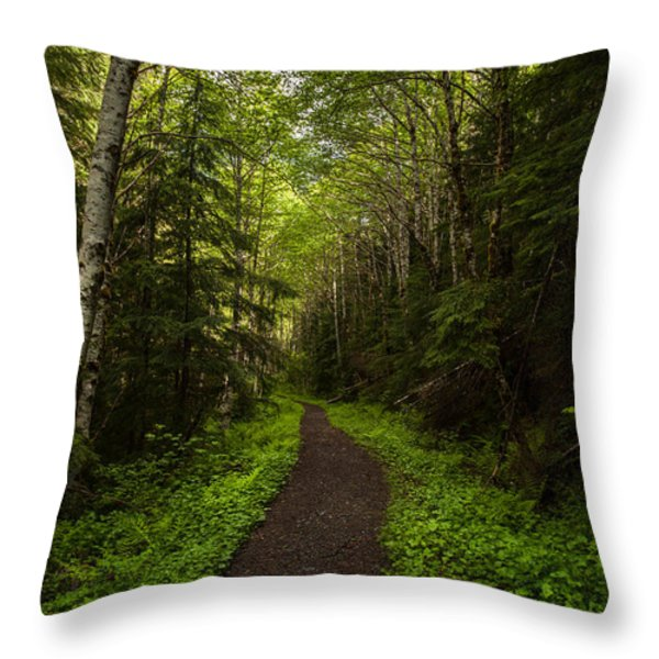 Forest Beckons Throw Pillow by Mike Reid