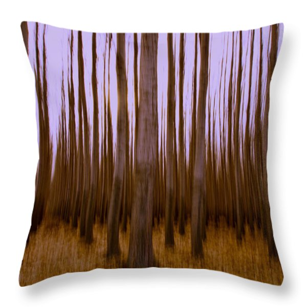 Forest Escape Throw Pillow by Dan Mihai