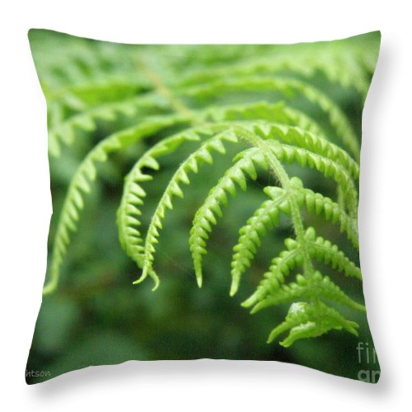 Forest Fern Throw Pillow by Lainie Wrightson