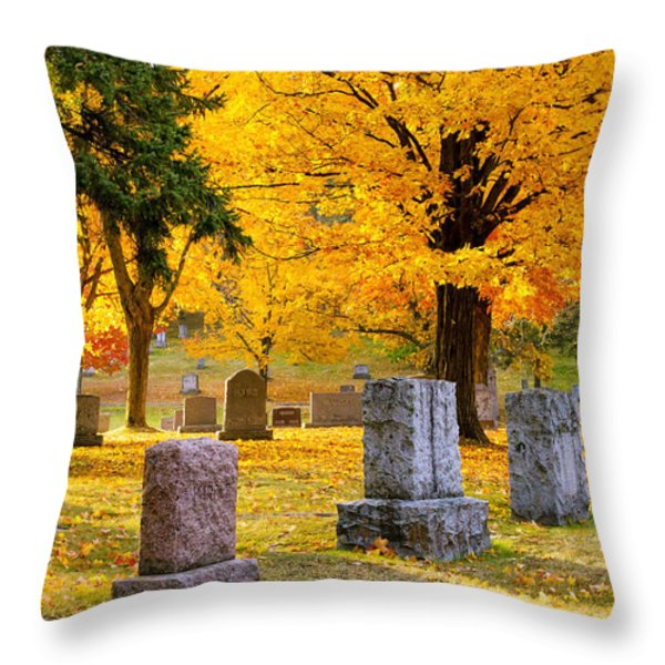 Autumn at Forest Hill Throw Pillow by Mary Amerman