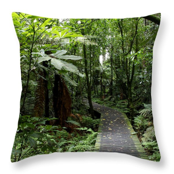 Forest Path Throw Pillow by Les Cunliffe