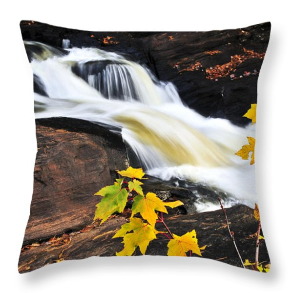 Forest River In The Fall Throw Pillow by Elena Elisseeva