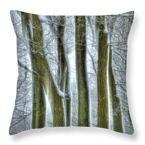 Forest Sentinels Throw Pillow by David Birchall