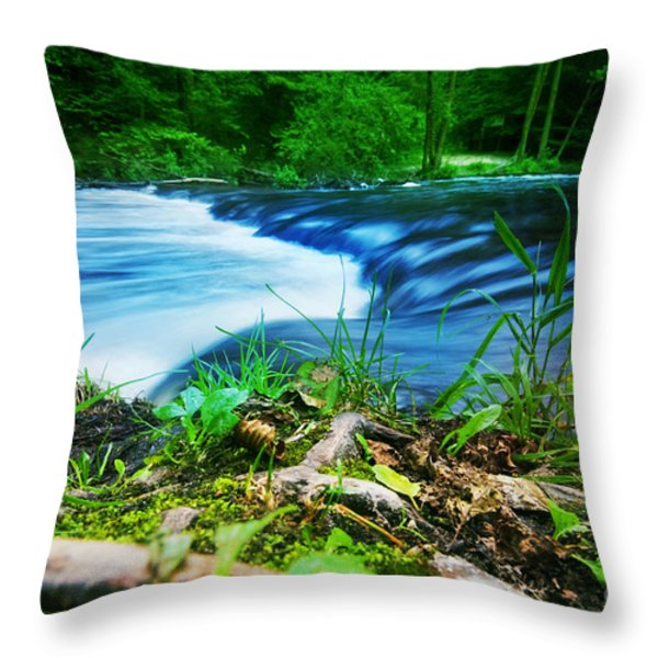 Forest Stream Running Fast Throw Pillow by Michal Bednarek