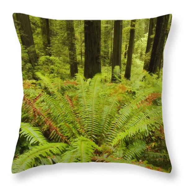 Forest Windmill Throw Pillow by Peter Coskun