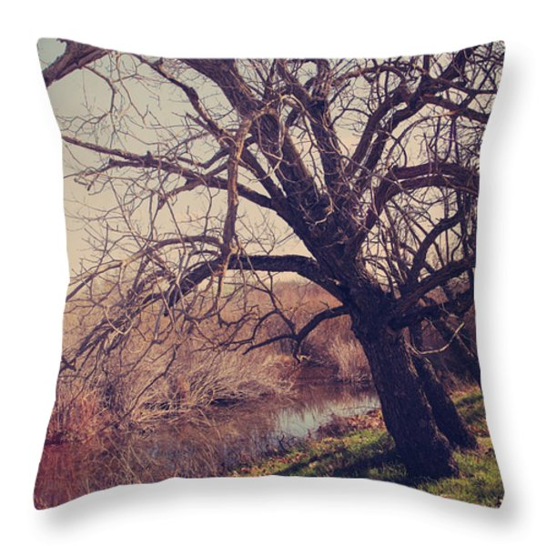 Forever In My Heart Throw Pillow by Laurie Search