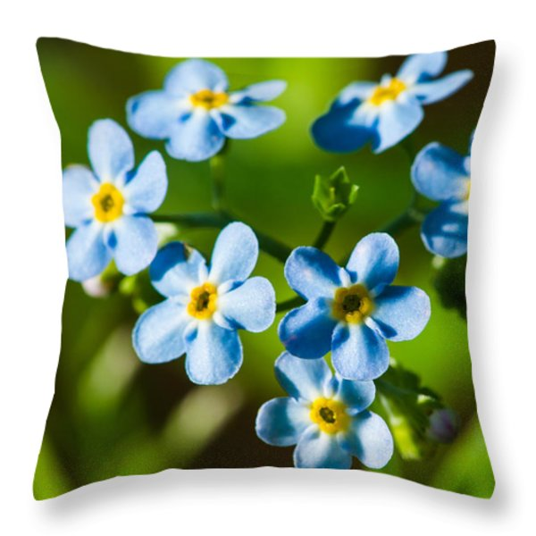 Forget You Never - Featured 3 Throw Pillow by Alexander Senin