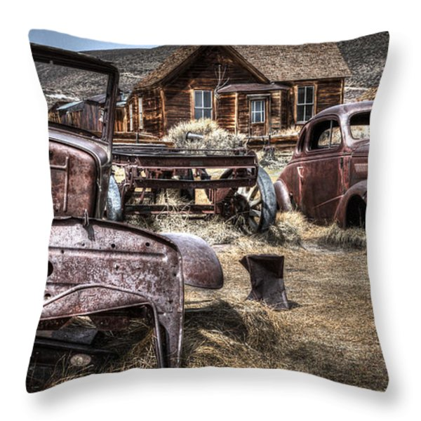 Forgoten Throw Pillow by Eduard Moldoveanu