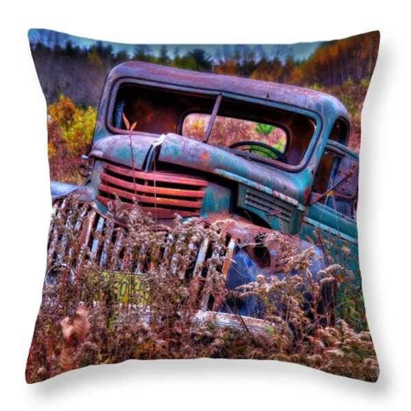 Forgotten Throw Pillow by Alana Ranney