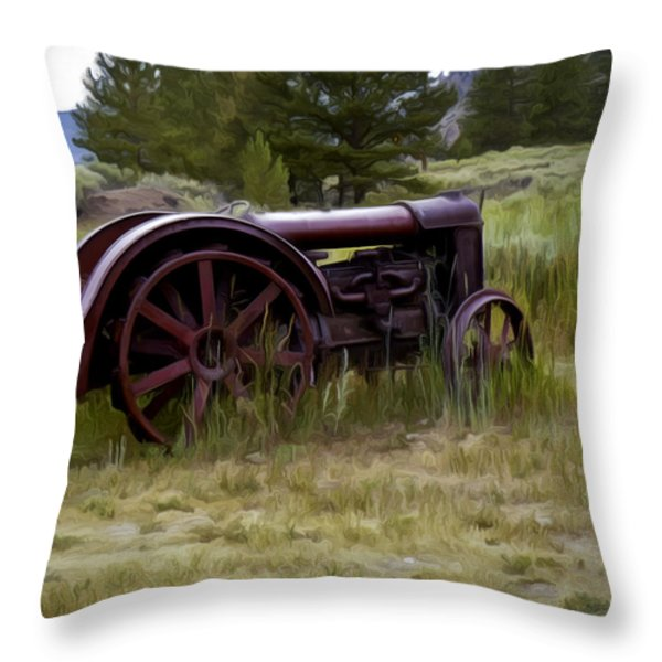Forgotten Throw Pillow by David Kehrli
